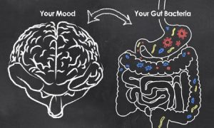 ibs causes gut brain